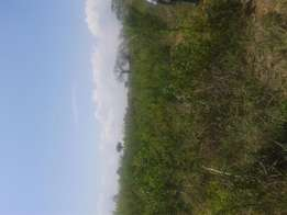 Quick sale of 52 acres in Vunga Kwale