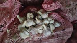 Local Garlic Cloves