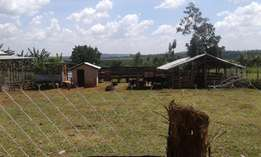 BUSIIKA: 14 acres of land with cows,goats and chicken for sale.