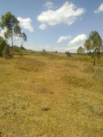 Affordable plot for sale Mutarakwa - image 2