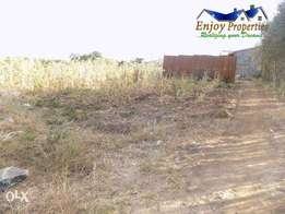 Thika Kiganjo 1/4 acre for sale