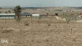 Kitengela Acacia Plot on sale