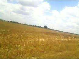9.5 acres of land in ngarengiro , Nyeri Nyahururu road