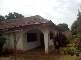 Spacious bungalow on big plot at low low price of 5.9m only
