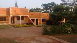 Germany style double for rent in Bweyogerere-Namulondo rd at 350k