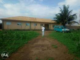 Giant Factory For Sale on 2 Plot Of Land