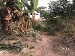 1/2 plot of land for sale