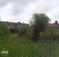 Genuine Plot Of land with C of O at Ajah