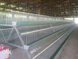 Battery Cage with Manure Scrapper for sale..