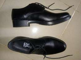 A Pair of Shoe (Brogues)