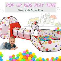 Children Indoor and outdoor play tent with free 100pcs of ball