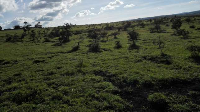 30 acres for sale in ongata rongai Ongata Rongai - image 6