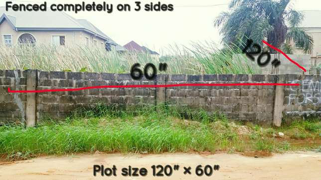A freehold plot of land for sale Amuwo Odofin - image 3