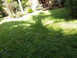 We supply and install instant lawns and Irrigation systems