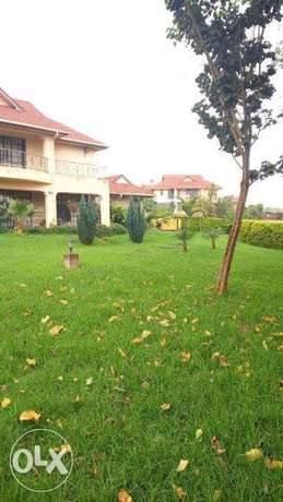 villa to let in runda for 300k Nairobi CBD - image 7