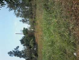 1 acre 6km off tarmac branching at shell makuyu near springs grill