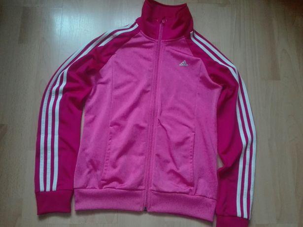 Bluza Adidas Różowa OLX.pl