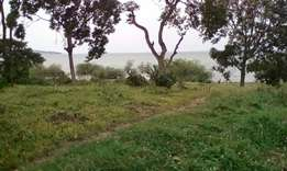 17 acres of beach land with a land title at 150 million per acre