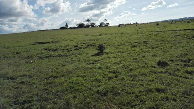 30 acres for sale in ongata rongai Ongata Rongai - image 1