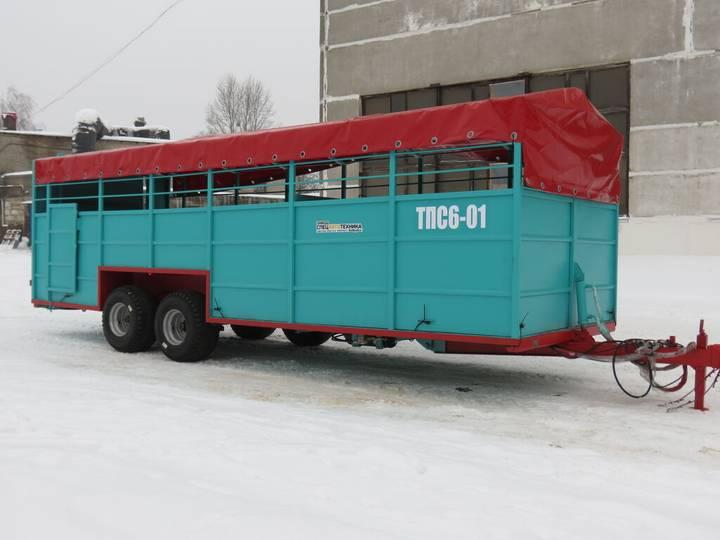 ТПС6-01