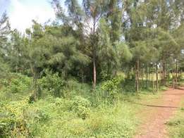 The Prime plots of 1/4 acre sizes,are close to the Kilifi bay beach ho