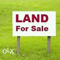 Cheap and genuine lands for sale at amoyo close to redeem camp, Kwara