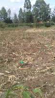 1/2 an acre for sale in merisho rongai