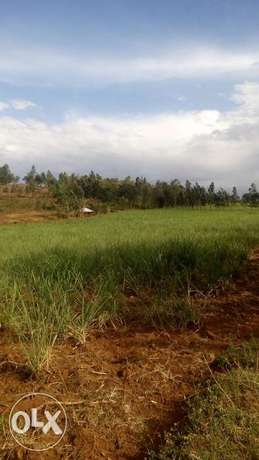 15acre land on sale in Pala,kabuoch,20km off Rongo town.160K per acre Kamenya - image 3