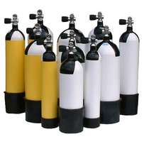 Gas Cylinders Supplies(MKN45-100)