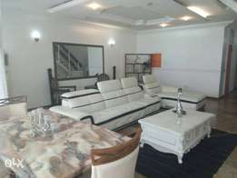 Luxury Fully furnished Apartments