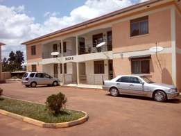 executive two bedroom apartment house for rent in kira at 500k