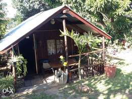 One bedroom cabin for R3500