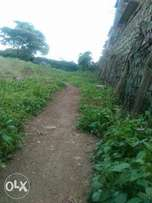 Land in utawala 500 metres from the main road. Proficiently located.