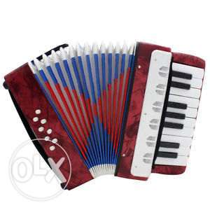Brand New Accordion for Kids - Class A