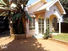 a three bedroom standalone house for rent in bukoto