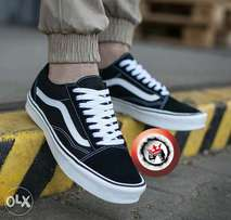 Skater vans off the wall (sk8)