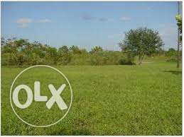 148 acres for sale in kiambu kirigiti at 5.5m per acre land