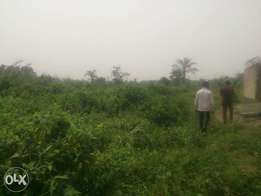 A plot of land for sale at oton,sapele