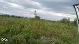 2 acres of land at kongasis for sale