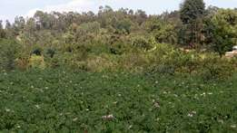 3/4 Ngarariga Limuru Land for sale at 4.5 Million