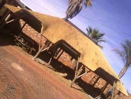 Thatch lapa construction and repair