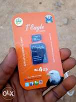 Eagle Memory Card 4GB Original