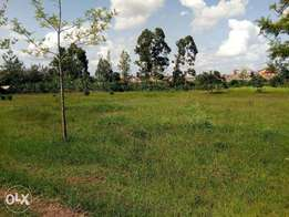 Affordable plots for speculation, Eastern Bypass