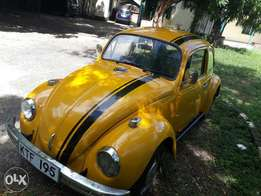Vintage Volkswagen Beetle/ Bug - Great Condition. 1970