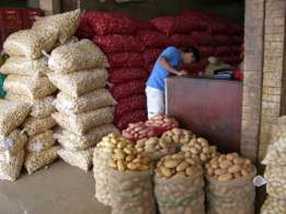 Standard Fresh Potatoes Now Available for sale