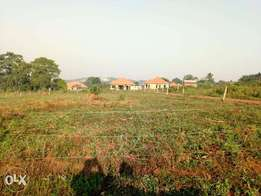 A suitable 50*100ft of plot on sale in namugongo-sonde at 35m