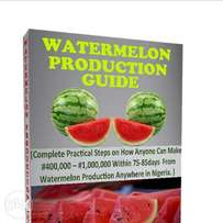 How to make 400k monthly from Watermelon
