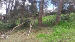An 1/4 an acre for sale in ngong