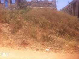 0.25 acre Upper Hill commercial 110m