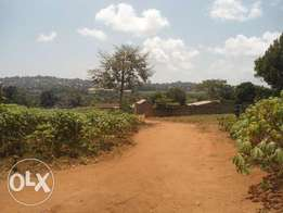 An Acre of Land for Sale In Entebbe